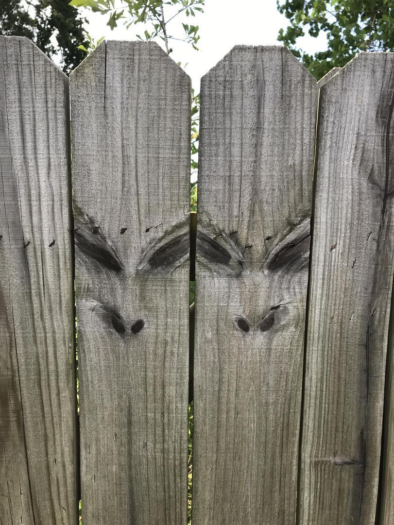 Defectos de la madera (los ramos) en las tablas de la valla en la forma de la cara de alienígena. Traducido del servicio de «Yandex.Traductor»