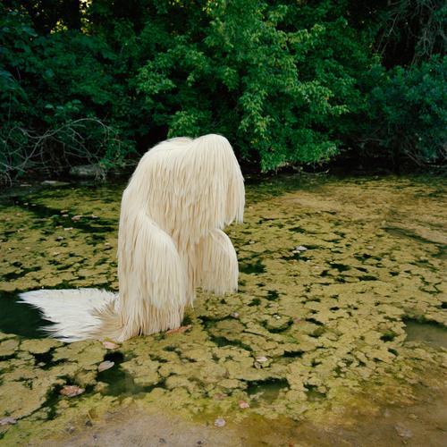 ХудожественнаяинсталляцияСьюзи Бристер «613 Silky Straight inSwamp», 2013год.