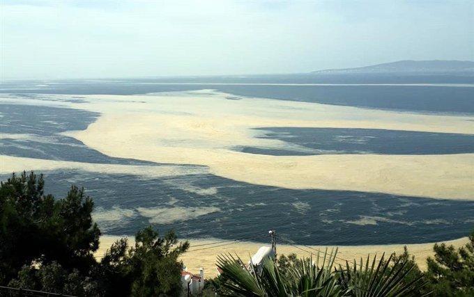 Hürriyet Daily News @HDNER  8 мая  Sea saliva covering surface of Marmara Sea worries experts