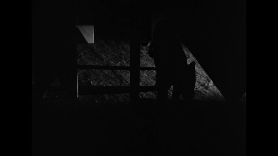 Черная женщина-кошка в темной комнате
