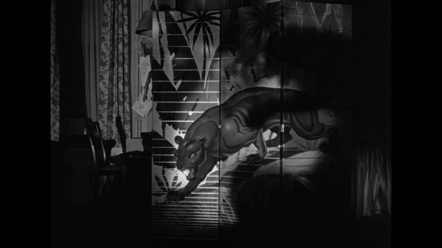 Тень женщины-кошки