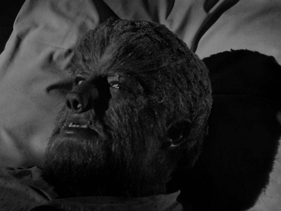 Человек-волк после превращения