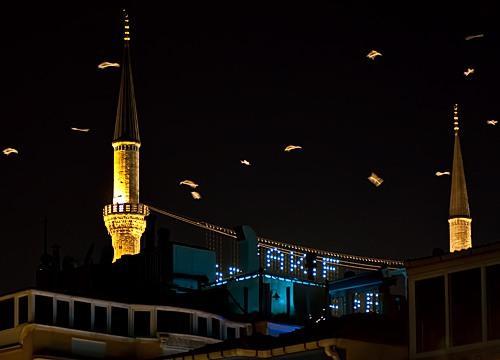Птицыночью кружат над мечетью.