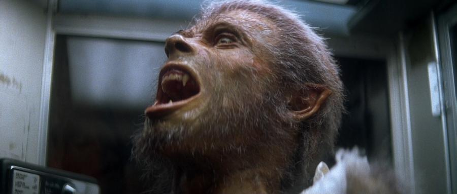 Человек-волк в процессе превращения